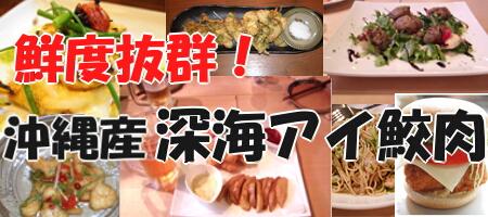 4abe9e958f1f8e432d7bd41d8b4c1a082 長寿県沖縄の鮫肝油