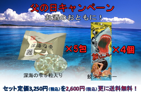 4bf4ecd45c72c0528db5e18341eeff584 長寿県沖縄の鮫肝油
