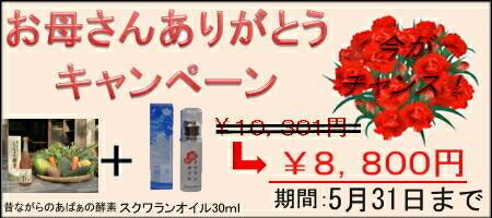 764127ab40ab52dad00476e27f8770171 長寿県沖縄の鮫肝油