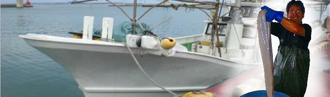 bd6493012570e50cd6d409d01b28b8ea 深海の雫が選ばれる4つの理由