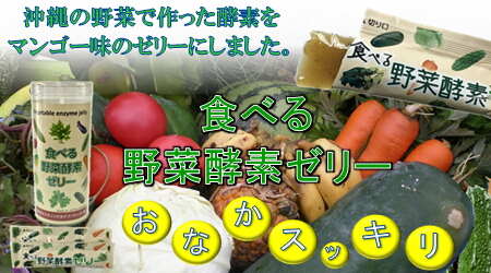 netto1 長寿県沖縄の鮫肝油