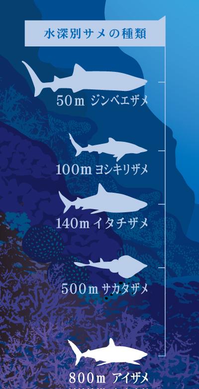 suishin 深海の雫が選ばれる4つの理由